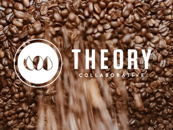 theorycollaborative.com